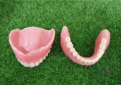 上下顎活動假牙兩片